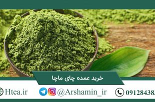 خرید عمده چای ماچا
