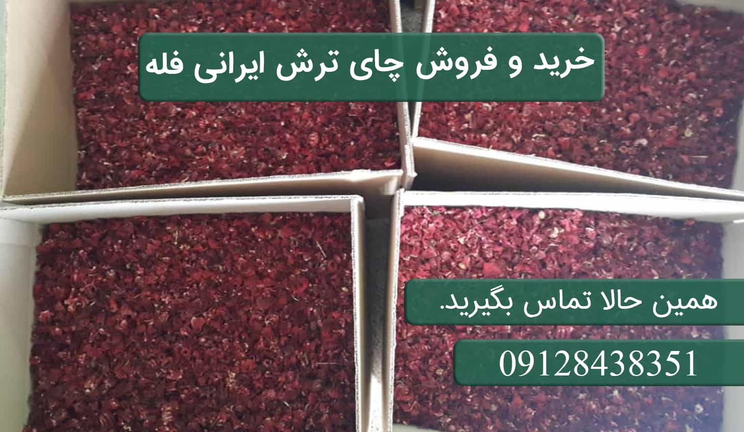 خرید و فروش چای ترش ایرانی فله